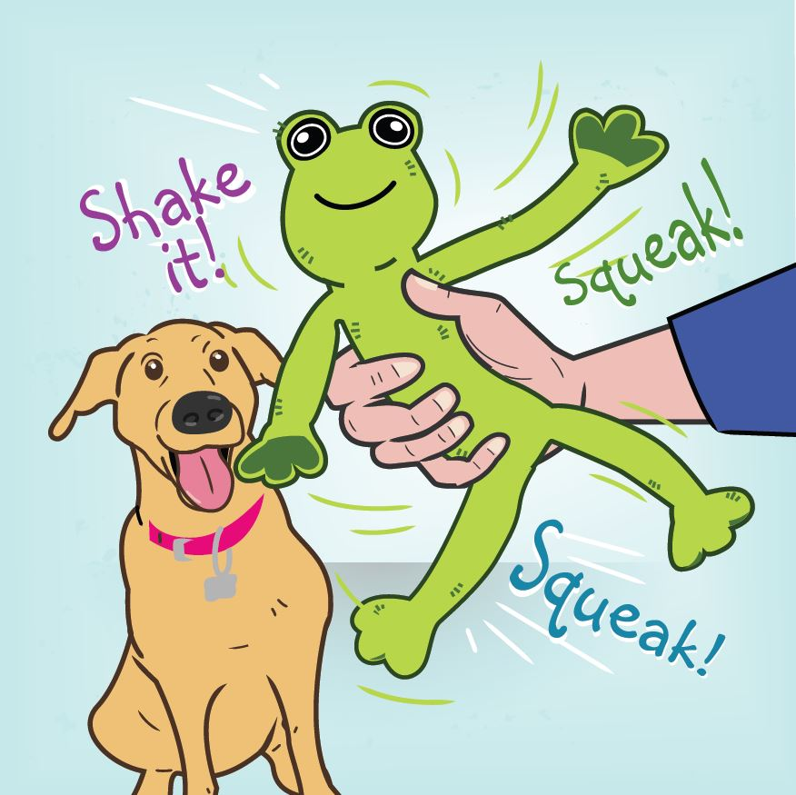 Demonstration on how to use the Shake and Squeak toys with dog